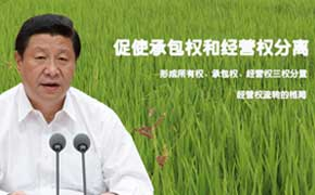 习近平定调农村土地制度改革