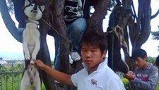 男子将狗吊树上虐杀 网友怒称太残忍