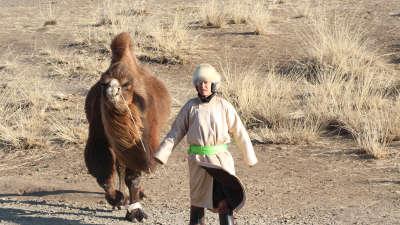 三兄弟入住蒙古包体验生活 林依轮蒙语搭话无人理