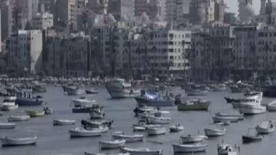 无法入境埃及停留亚历山大港口 斯里兰卡椰子