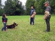 德国牧羊犬保护5岁小主人,咬坏人不放(演练视频)