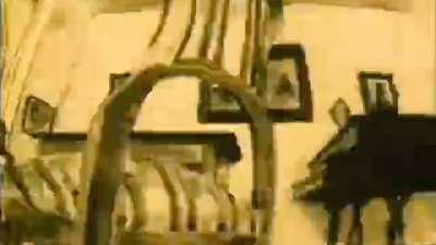 1981 第53届奥斯卡最佳动画短片 苍蝇 A Légy