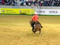 国际马联马术欧洲锦标赛 西部马术决赛II