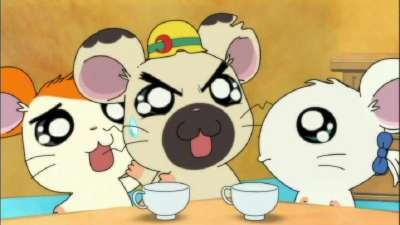 哈姆太郎第三季20 国语版