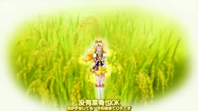 光之美少女Happiness charge 11