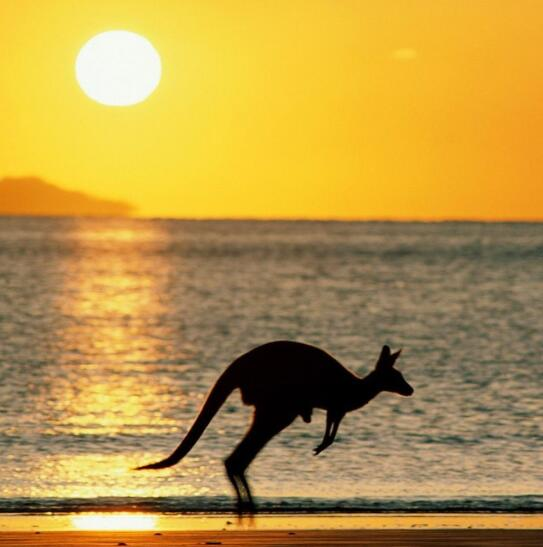 澳洲酩探(第一期)