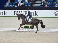 Reem Acra国际马联世界杯盛装舞步