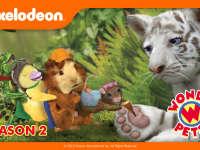 神奇宠物救援队 第二季
