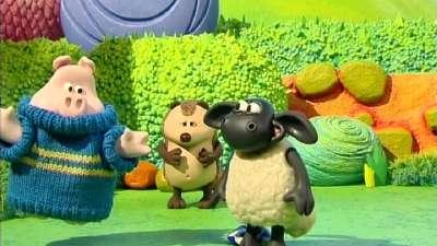 小小羊提米11