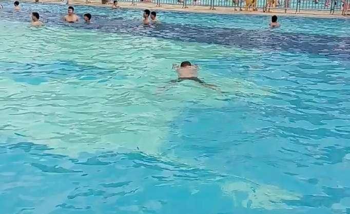 学习蛙泳的步骤视频教程