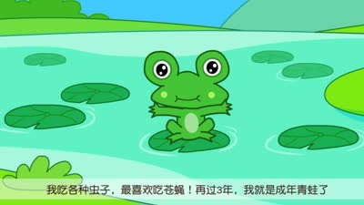 青蛙-咕力咕力