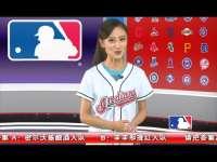 2015棒球周刊第22期
