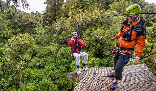 罗托鲁瓦滑索飞跃树冠之旅