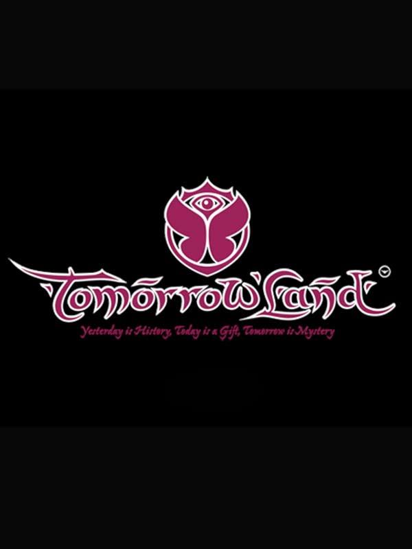 Tomorrowland 电子音乐节