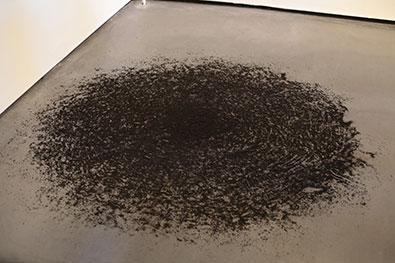 科学破坏狂之神秘的蚂蚁死亡漩涡