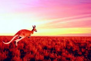 第十集:澳洲葡萄酒的三足鼎立