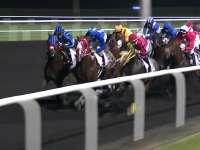 赛马届的巅峰之战迪拜锦标赛 马鞍上的骑士们蓄势待发