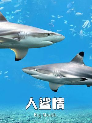 人(ren)鯊情