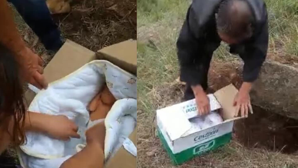 荒坡地下传出哭声 采蘑菇村民循声挖出一活婴