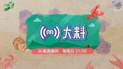 大料-36氪首档周末直播节目