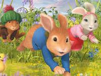 比得兔(特别篇)