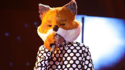 狐狸爸爸现超奇葩口音