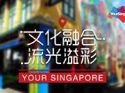 360°VR新加坡11之文化融合