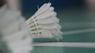 法国羽毛球公开赛1/4决赛