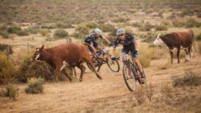 自行车版达喀尔拉力赛!2016南非山地车马拉松集锦