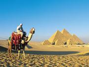建造帝国02:埃及(上)
