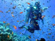 日本极限水肺潜水
