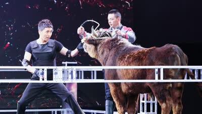 沙宝亮实战练习掼牛