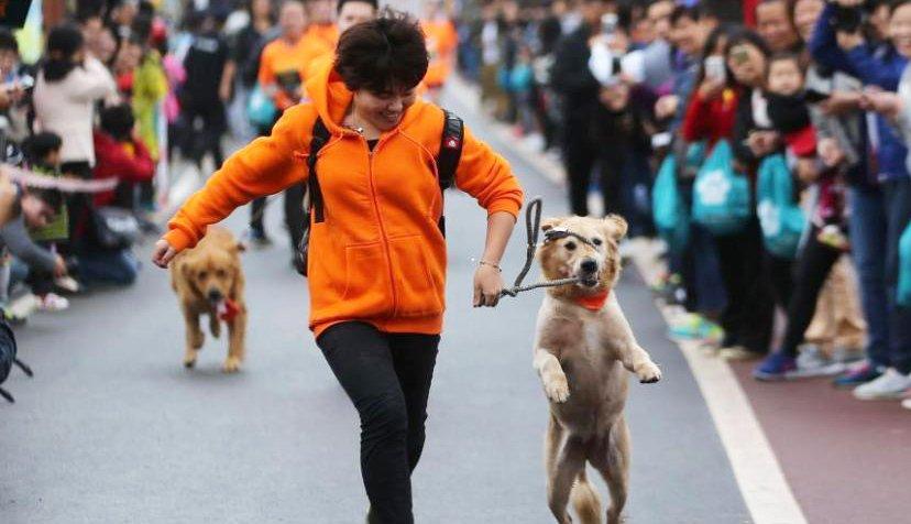 南马不小心抢镜 中国马拉松史上第一例乌龙事件