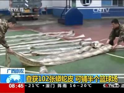 [视频]广西崇左:查获102张蟒蛇皮 可铺半个篮球场