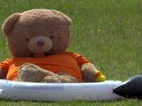 F1匈牙利站FP3:头哥熊今天爱泡澡