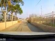 春节期间全国奇葩交通事故合集!行车记录仪实拍3