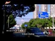《真实纪录》20170425:百年巨匠 潘天涛(一)