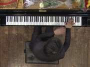 郎朗: 2010维也纳独奏音乐会 3D杜比环绕声版本