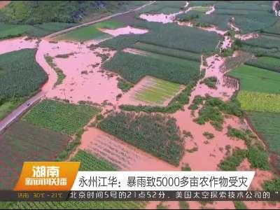 2017年06月06日湖南新闻联播