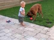 狗狗看见主人只宠小宝宝超生气,叼着玩具闹脾气