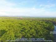 《你好·防城港》2017年防城港宣传片出炉,航拍延时美景让你爱上防城港!