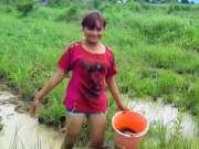 柬埔寨媳妇勤劳能干,田里抓到很多大黑鱼,高兴坏了