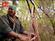 求生高手雨林追猎缅甸蟒 被咬也不怕 一把柴刀来了结 蛇肉烧烤蛇皮做水袋