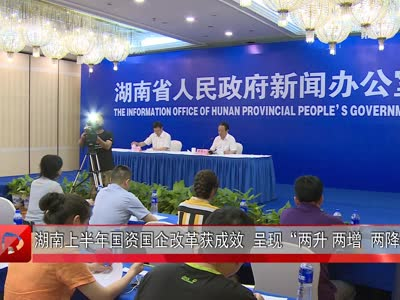 """湖南上半年国资国企改革获成效  呈现""""两升 两增  两降"""""""