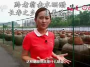 CCTV10味道(黔老翁部分)