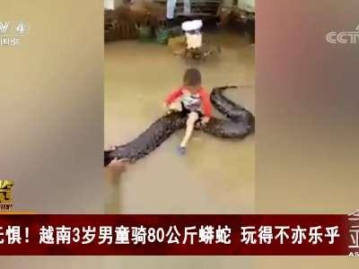[视频]无惧!越南3岁男童骑80公斤蟒蛇 玩得不亦乐乎