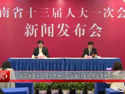 湖南省第十三届人大一次会议举行首场新闻发布会
