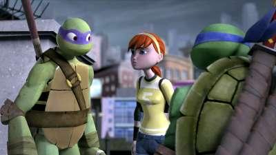 忍者龟 14