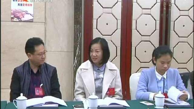 政协委员分组讨论《政府工作报告》和计划、财政报告