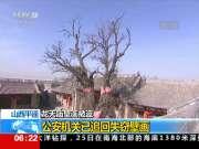 山西平遥:龙天庙壁画被盗——公安机关已追回失窃壁画